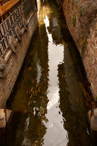 ทางน้ำเล็ก ๆ ตัดผ่านไปทั่วเมือง