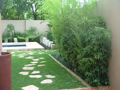 Flickr Landscaping  (44) (Badec Bros Landscaping) Tags: flowers trees summer flower tree art architecture modern garden landscape contemporary stunning waterfeature bros irrigation gabions koiponds landscapingarchitecture moderngardens badec kingfisherlandscaping badecbroslandscaping gabionwaterfeatures badecbrosdeco featurepoles