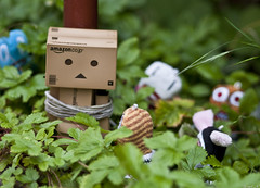 Danbo was having a BAD day... (Grant_R) Tags: leaves garden toy nikon dof bokeh exploring sigma figure figurine f28 cardboardbox japanesetoy undergrowth 105mm danbo d90 revoltech nikond90 danboard grantr corsaguy