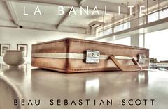 A Briefcase - La Banalité - Beau Sebastian Scott