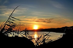 Sunset. (mkurtel) Tags: sunset sea altnoluk saariysqualitypictures