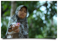 Thank You =) (AnNamir c[_]) Tags: flower canon 50mm bokeh hijab malaysia bunga f18 kakak tudung 500d hbw bukeh bokehlicious abigfave mawaddah keledek annamir sahabatsejati getokubicom bungaulamraja familygetty2010