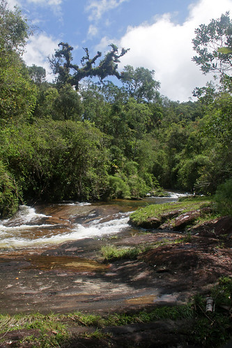 bocaina brazil forest MG river rocks sky trees travel water