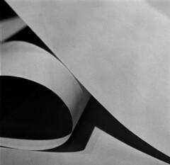 (Lance Balzart) Tags: hasselblad diafine tmax400 tmy 500cm coolscan9000 planar80mmct