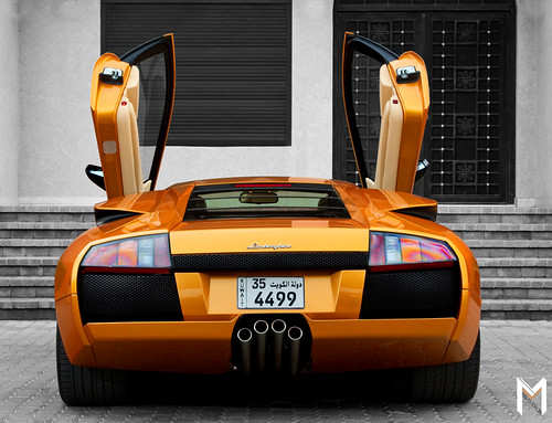 Gold Murcielago-  Doors Open Wide