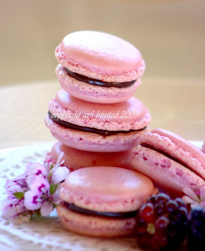 French Macarons by ab'09
