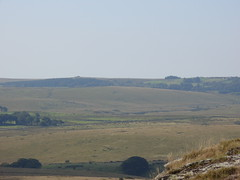S1051763 (AppleJays) Tags: england nationalpark hills devon fields moors dartmoor moorland aonb tors