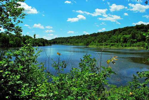 st. croix river at william obrien state park