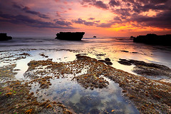 As the Day Goes (tropicaLiving - Jessy Eykendorp) Tags: light sunset sea sky bali seascape beach nature water coral clouds reflections indonesia landscape coast rocks shoreline echobeach seaweeds canggu efs1022mmf3545usm outdoorphotography canoneos50d bwcpl tropicaliving hitechfilters rawproccessedwithdigitalphotopro tiffproccessedwithadobephotoshopcs3 asthedaygoes hitechfilterndgrad