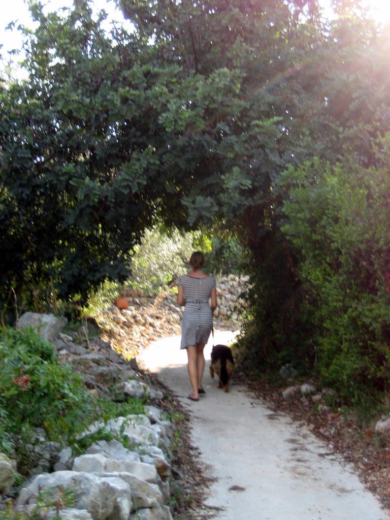 De paseo