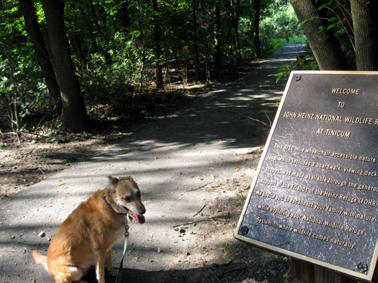 Una at the Head of the Trail (Click to enlarge)