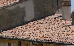 P1080951 (roberto_venturini) Tags: italy mediterranean tuscany isoladelba