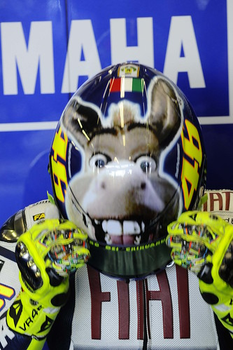 AGV The Donkey Helmet