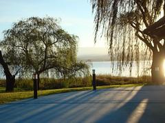 Atardecer en el lago (-.Juampi.-) Tags: lago atardecer paisaje rosario cordoba losmolinos jpgcom