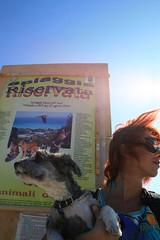 vacanza al mare con cane in spiaggia in Liguria
