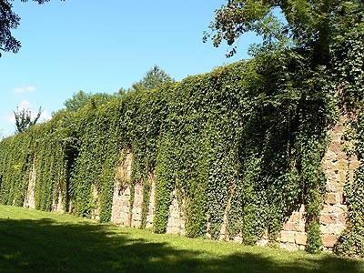 les remparts de  Wissembourg.jpg