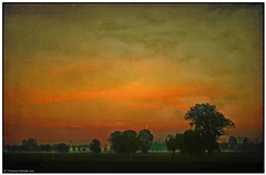 ~ sunrise in the flat lands ~ (tadelloeser ) Tags: morning trees light sky texture sunrise mywinners d700 tadelloeser heartawards theunforgettablepictures zafirogroup