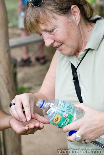 Mom Eating a Sago Worm