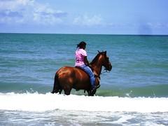 La chica del caballo y el mar (arosadocel) Tags: girl del caballo mar chica ciudad playa carmen campeche joven océano muchacha