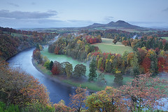 Scott's View - Autumn Morning (David Kendal) Tags: dawn sirwalterscott autumncolours melrose meander autumntrees gloaming morningmist bemersyde eildon rivertweed scottishborders scottsview eildonhills