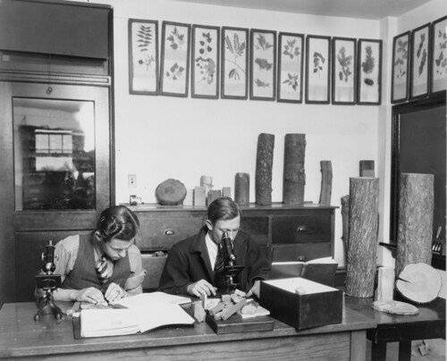 Colorado State University - 1929 Forestry Lab