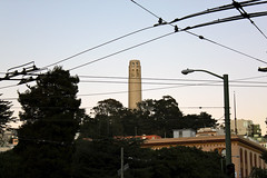 Coit Tower, from Columbus Ave