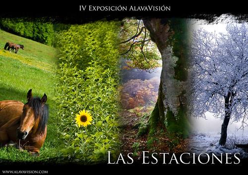 IV Exposición ALAVAVISIÓN