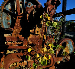 Going Back To Nature (Birdman of El Paso) Tags: blue sky green yellow geotagged weeds texas tx rusty joe el lila machinery paso birdman soop grossinger geo:lat=6063953 geo:lon=151141663