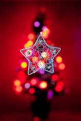 xmas tree bokeh (robbie ewing) Tags: christmas red gold lights star bokeh circles xmastree festiveseason