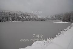 09112-ML (michellcrea) Tags: ski montagne neige lorraine vosges jonquilles bussang tourbire