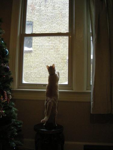 December 2009 075