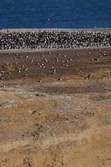 baudchon-baluchon-descente-patagonie-29