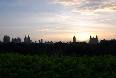 (Rachel Citron) Tags: rooftop mug gothamist themet curbed uppereastside summerinthecity themetropolitanmuseumofart museummile parkviews nikond40x thelocaleastvillage manhattanusersguide sunsetincentralpark anthonycanoontheroof