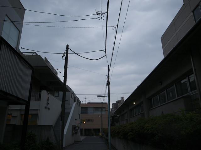 _0012733.jpg
