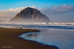 Morro Rock (Mimi Ditchie) Tags: morrobay morrorock ocean water pacificocean shore coast beach waves getty gettyimages mimiditchie mimiditchiephotography