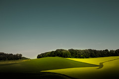 Humble Grass (Loren Zemlicka) Tags: blue trees light shadow summer sky green nature field grass june wisconsin rural landscape photography photo midwest image farm horizon country picture hills explore land crops agriculture frontpage canonef1740mmf4lusm rolling blackearth canoneos5d flickrexplore flickrfrontpage lorenzemlicka