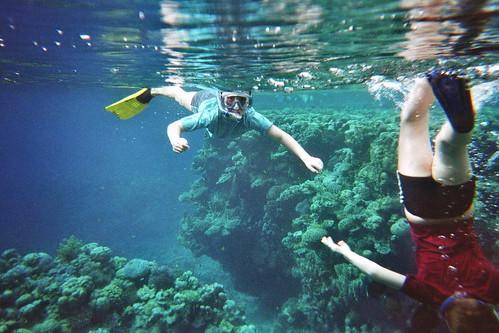 Lau & Tue i det røde hav