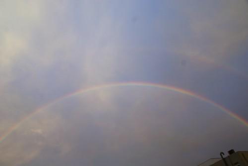 昨日、二重の虹を見たのよ。うまく撮れなかったけどアップするわね