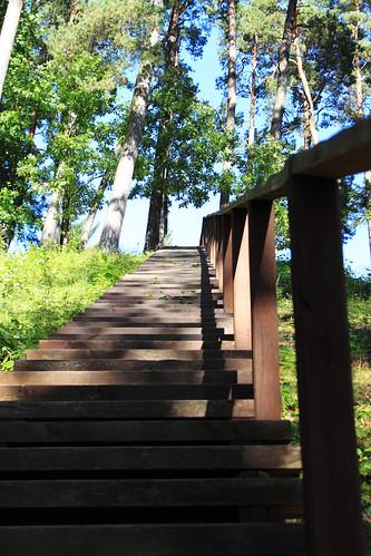 Laiptai į Kartuvių kalną