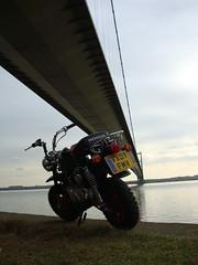 Honda Monkey bike  Humberbridge (gwjak) Tags: bike honda monkey humberbridge