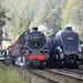 Autumn Steam Gala 2009