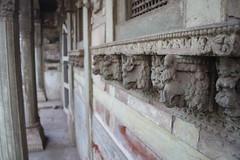 IMG_0634 (GautamJPatel) Tags: gujarat kheda
