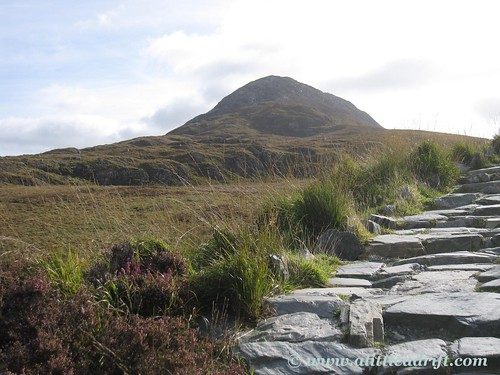 Diamond Hill in the Connemara National Park