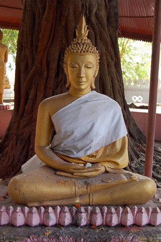 Thursday Buddha