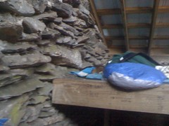 Squirrel in Mount LeConte Shelter