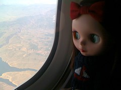 Casey's first plane trip