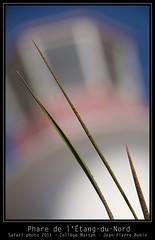 Phare de l'Étang-du-Nord (djipibi) Tags: sea mer nature training french landscape creativity photography islands photo photographie emotion 21st formation safari vision madness québec passion week technique paysages semaine intensity magdalen sheer intensive folie collège marsan 2011 émotion intensité îlesdelamadeleine créativité 21e