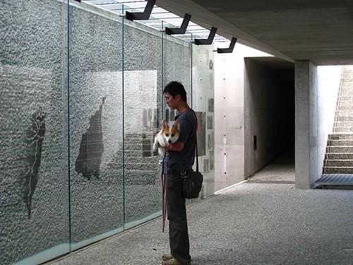 你拍攝的 200907宜蘭1 (13)。