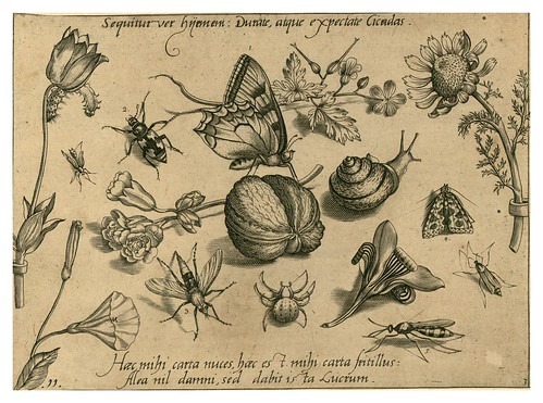 010-Archetypa studiaque patris 1592