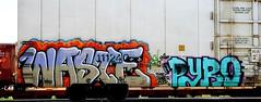 Waste - Pyro 09 (mightyquinninwky) Tags: railroad up geotagged graffiti tag tracks railway tags tagged railcar 09 rails unionpacific bebe waste graff graphiti pyro 2009 sober freight boxcars railcars trainyard reefer trainart paintedtrain armn freightyard railart gtl rhoe evansvilleindiana platef howellarea paintedreefer geo:lon=87609728 paintedrailcar taggedreefer taggedrailcar end20 geo:lat=37960995